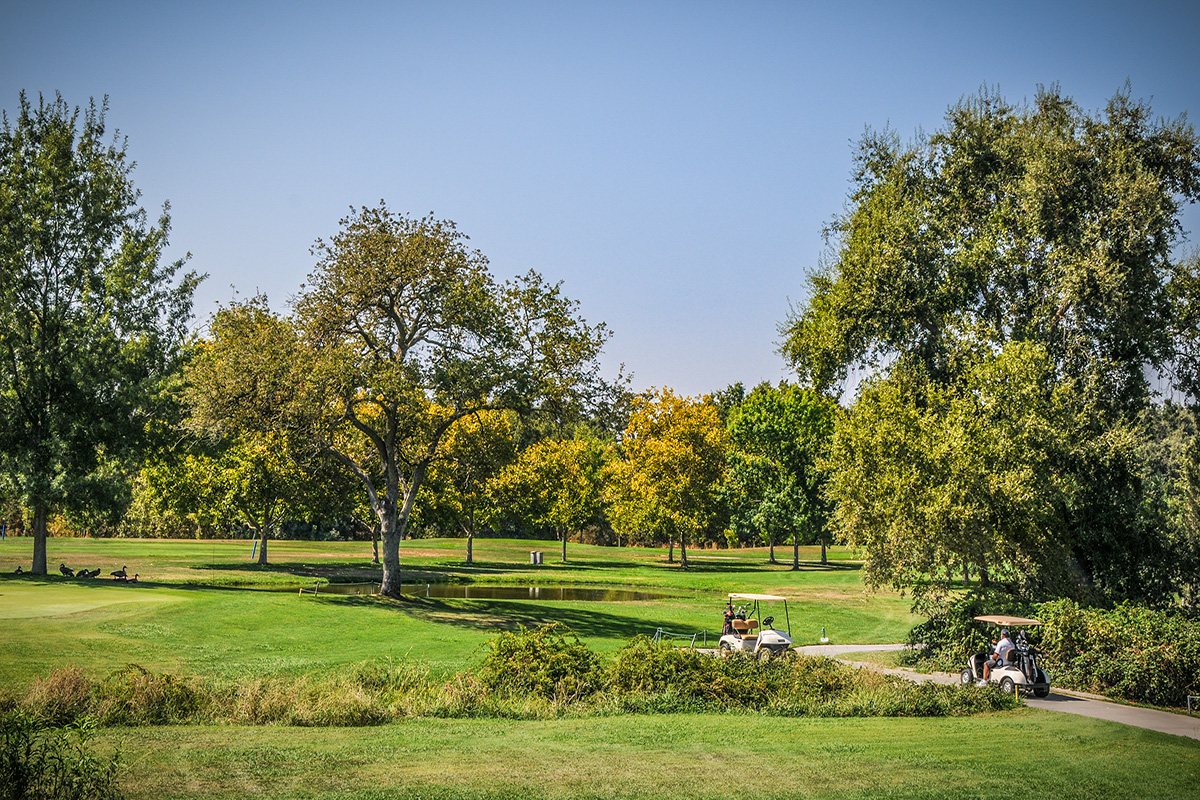 Spend the Day at Antelope Greens Golf Course